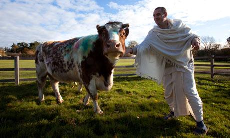 cow-farmer