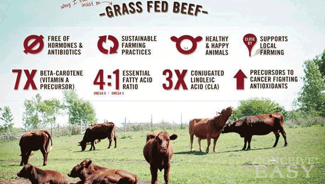 why-grass-fed-beef-is-better-for-fertility