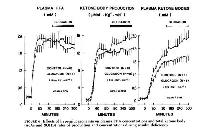 high-ffa-low-insulin-high-glucagon-stop