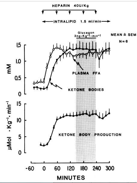 high-ffa-low-insulin-high-glucagon