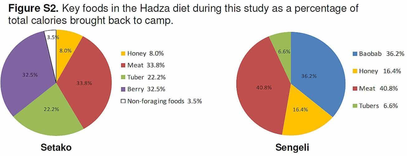 hadza_food